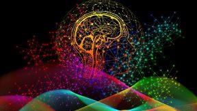 Auf dem Bild ist ein buntes Gehirn und ein durchsichtiger Kopf zu sehen.